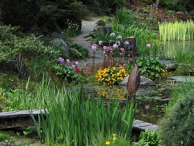 Pond Gardens 2015
